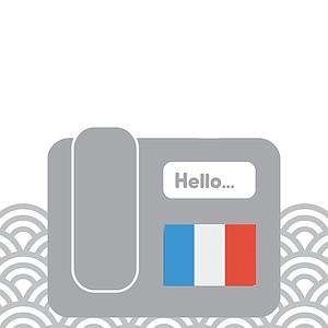 France - Toll Free (extension)